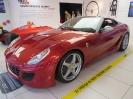 Ferrarimeseum_26