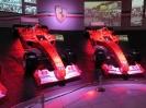 Ferrarimeseum_52