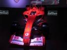 Ferrarimeseum_54