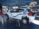Rally van Sardinië 2013_6